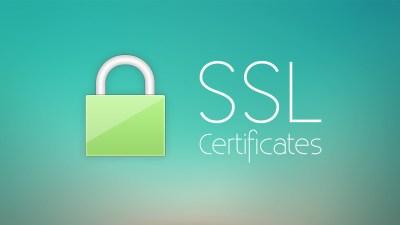 CRL, OCSP와 OCSP Stapling 의 개념과 설정