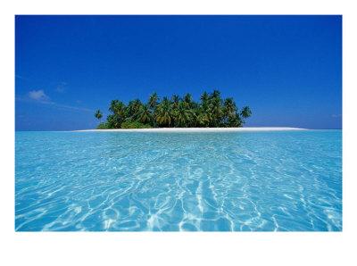 499096uninhabited-tropical-island-ari-atoll-maldives-posters