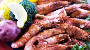 King Neptune's Royal Red shrimp is a prince among prawns. (Chad Allen/Alabama NewsCenter)