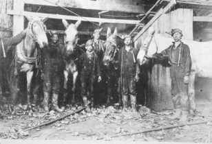 Early workers and mules at Sloss Furnaces. The Historic Red Ore Express walking tour isn't just about historic sites. It's about the people who worked or spent time there. Oral history is blended into the narration. (contributed)