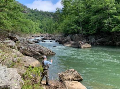 Little River Waterkeeper will use its grant to support, with partners, elements of the Little River Watershed Restoration Project. (Bradley Sparks / National Park Service)