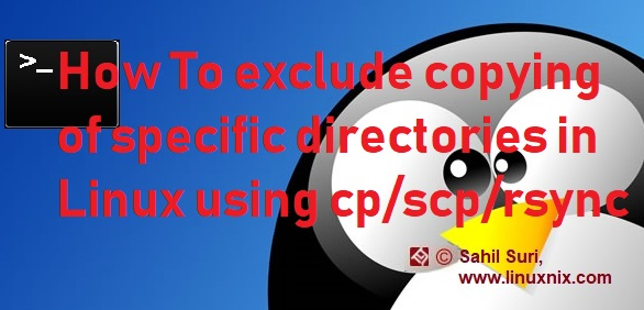 How To exclude copying of specific directories in Linux using cp/scp/rsync