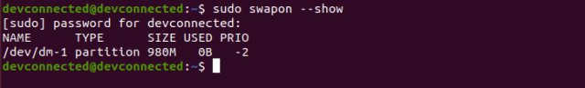 swapon show