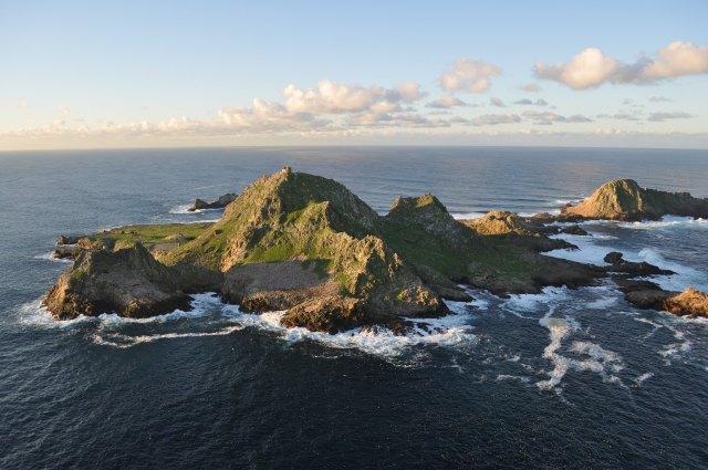 Biden administration revives controversial Farallon Islands poison plan