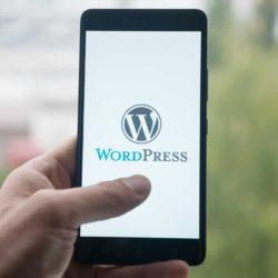 wordpress core web vitals 60f15666d5c1b sej 250x250 1