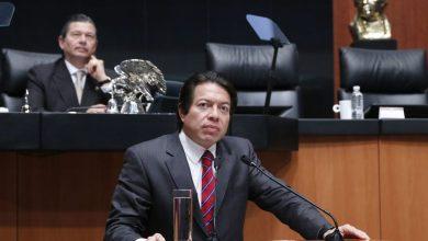 """Photo of Un """"vegetal"""" llamado Mario Delgado"""