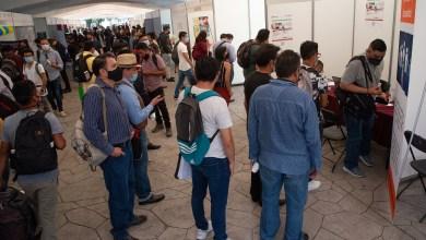 Photo of Corte deslinda a sitios web de malas ofertas laborales