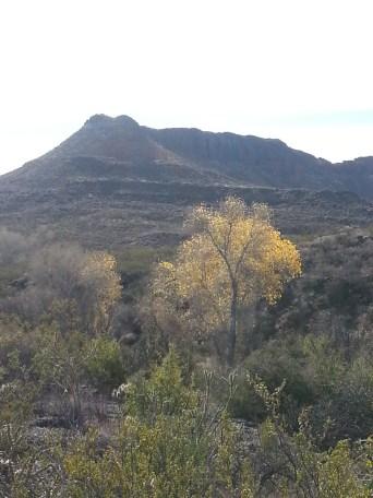 Puerta Chilicote Trail