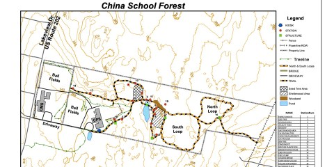China School Forest Update