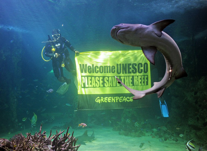 A reef shark swims past as Sydney Aquarium divers unveil a Greenpeace banner urging UNESCO to save the Great Barrier Reef (AFP Photo / Greg Wood)