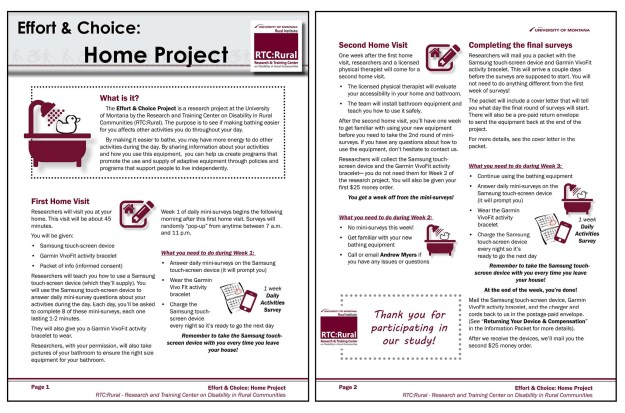 Effort & Choice: Home Project informational handout. Link below image for text-only version.
