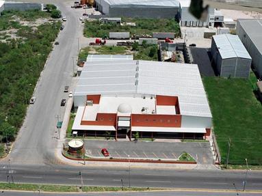 RTE de Mexico - La empresa