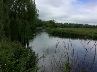 and admired the moiréd river,