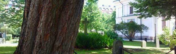 TreeCemetary