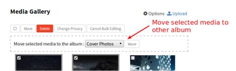 bulk edit move media