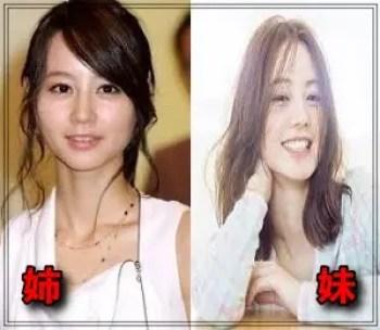 堀北真希,女優,可愛い,妹,NANAMI,原奈々美,似てる