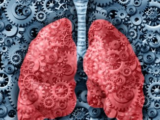 lungs with gears