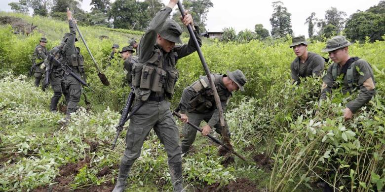 Foto Policía Antinarcóticos.