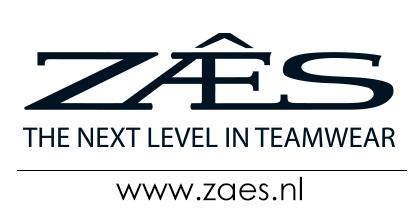 Zaes2016