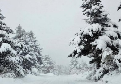 Snežni haos– zavejana sela, nema struje