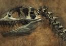 U Egiptu otkriveni ostaci nepoznate vrste dinosaurusa