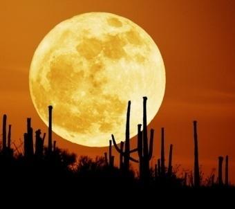 Bien temperaturat e Hënës nën 190 gradë