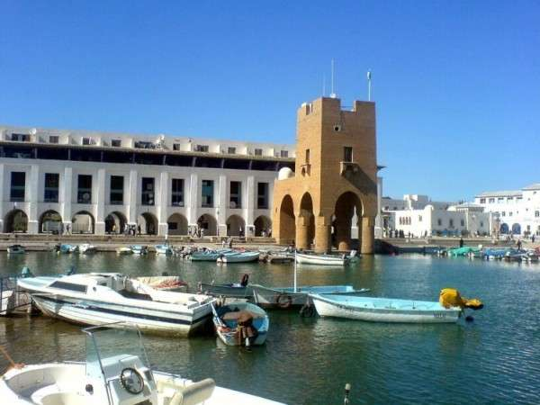 Arabska wiosna w Algierii w skoroszycie napisanym po angielsku