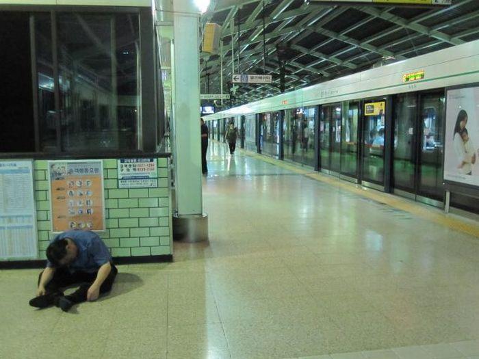 У корейцев выходной (59 фото)