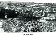 oldchisinau_com-basarabia-014