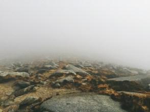 The mist envelopes us