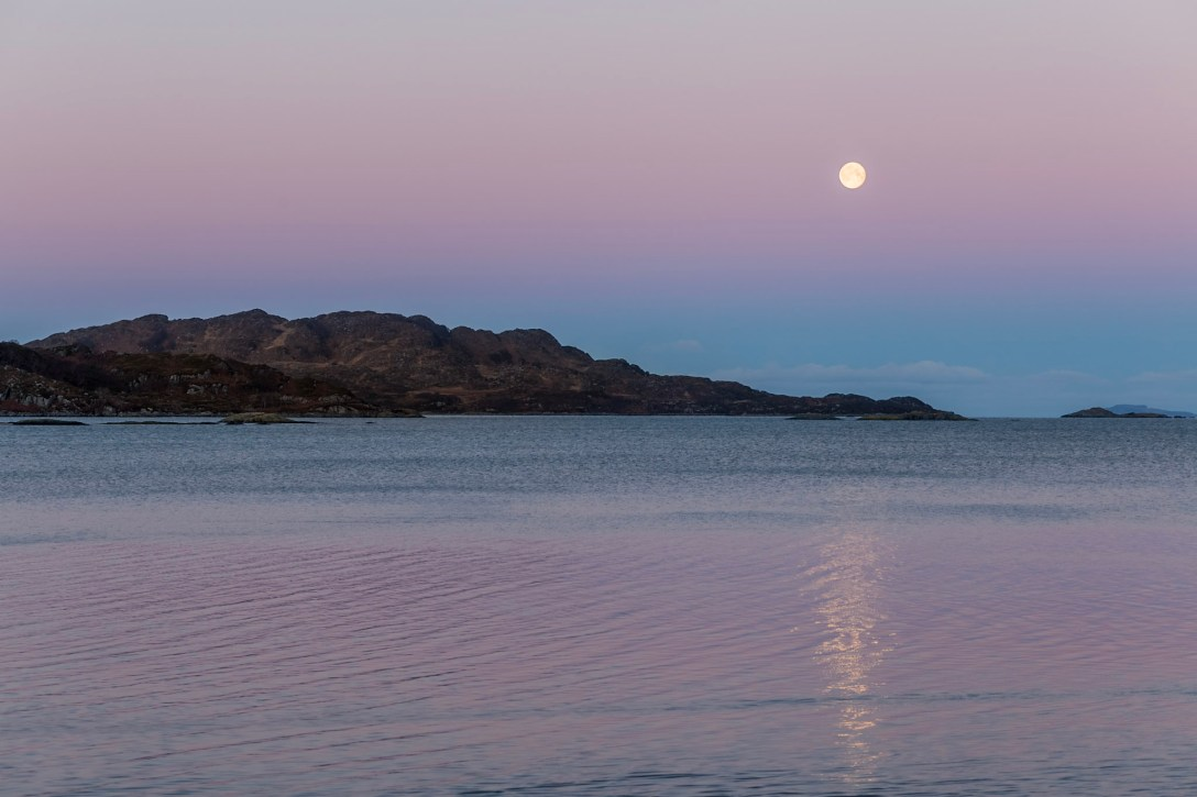 Moon in a pink sky