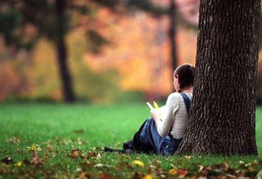 6 Langkah Menjadi Penulis Profesional