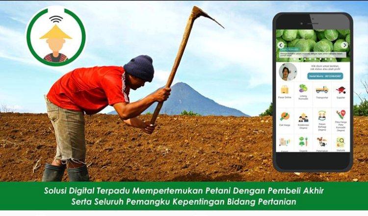 8 Fitur Pak Tani Digital Memudahkan Jual Hasil Pertanian Secara Online
