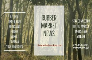 rubber price today