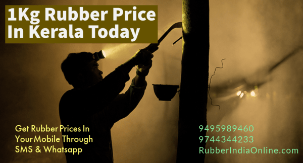 1 Kg Rubber Price In Kerala Today will get through Whatsapp and SMS