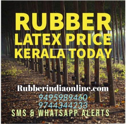 Rubber latex price