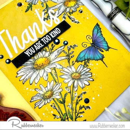 Rubbernecker Blog Daisy-on-colored-cardstock-2-500x500