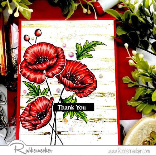 Rubbernecker Blog Easy-Foil-Backgrounds-4-500x500
