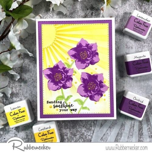 Rubbernecker Blog Wondrous-Wishes-Purple-500x500