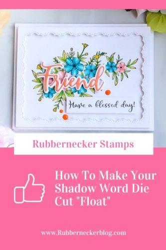 Rubbernecker Blog shadowwordfloat-333x500