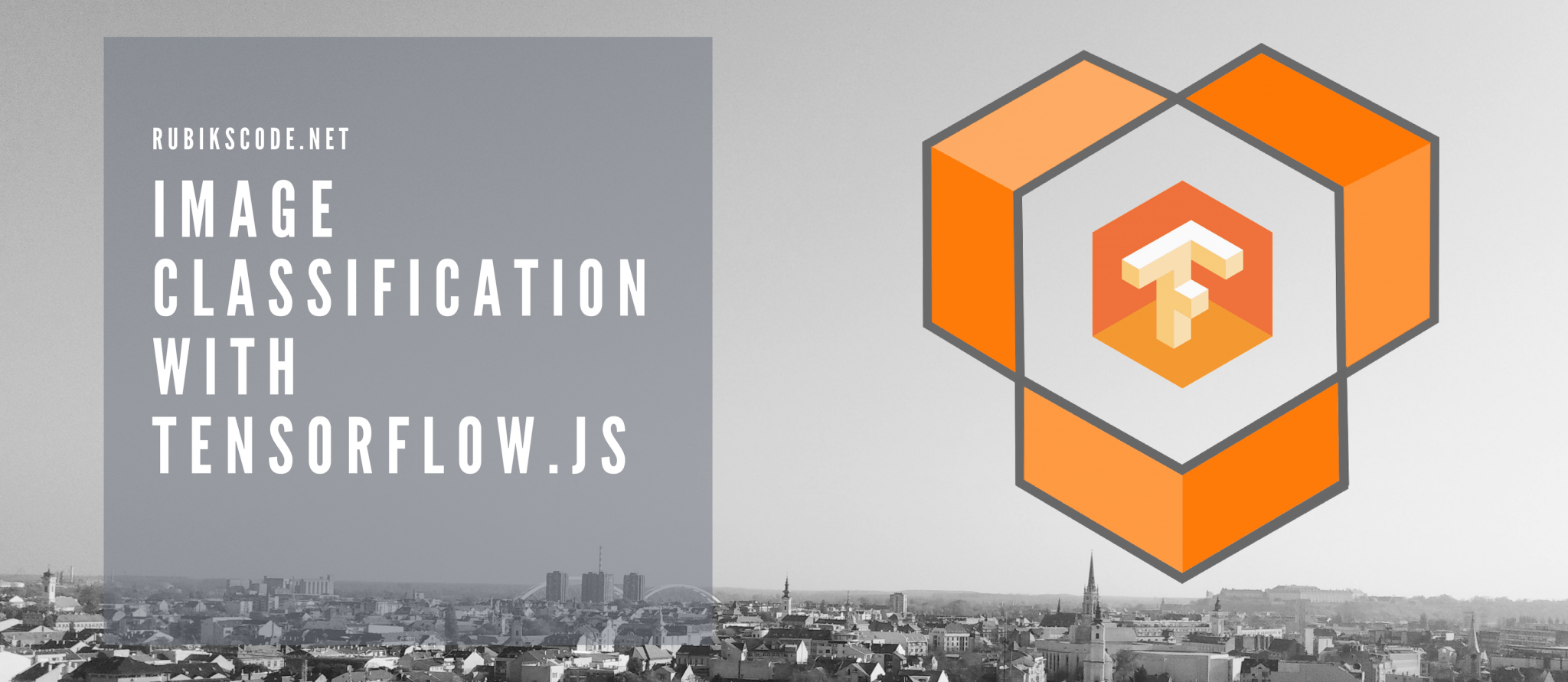 Image Classification With TensorFlow js
