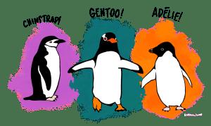 Palmer Penguins Classes