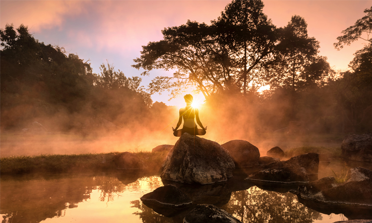 Why You Should Book Tantra