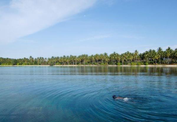 Pulau menjangan lokasi snorkeling paling bagus yang pernah saya kunjungi.