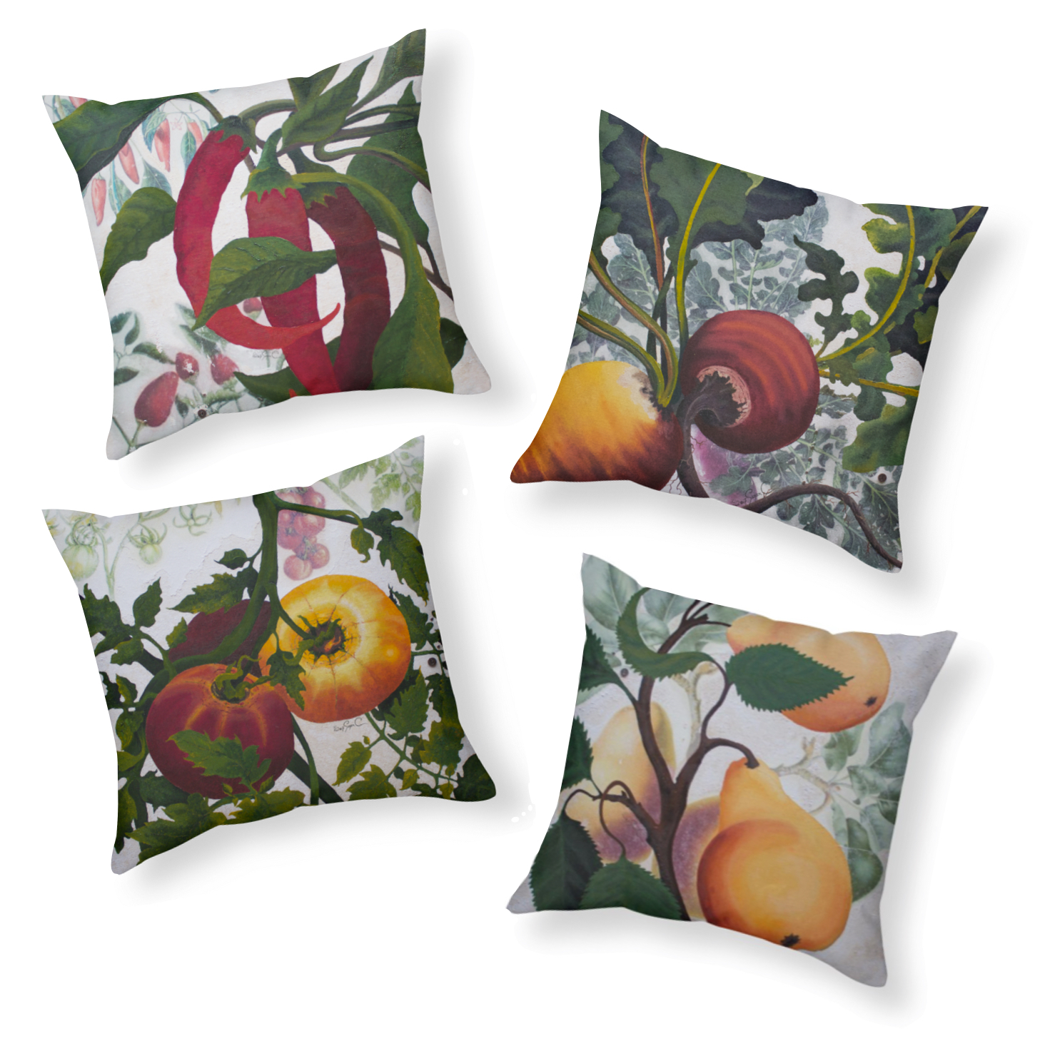 Ruby Charm Colors Garden Goods Fruit and Vegetable Pillow Collection