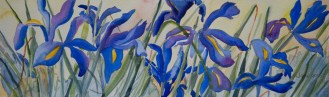 jane-smith-irises
