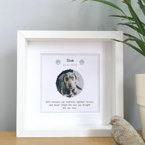 personalised pet memorial frame
