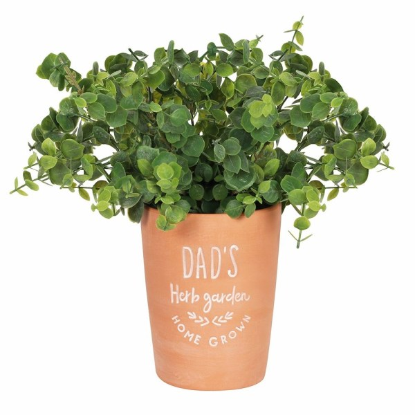 Dads Garden Terracotta Plant Pot