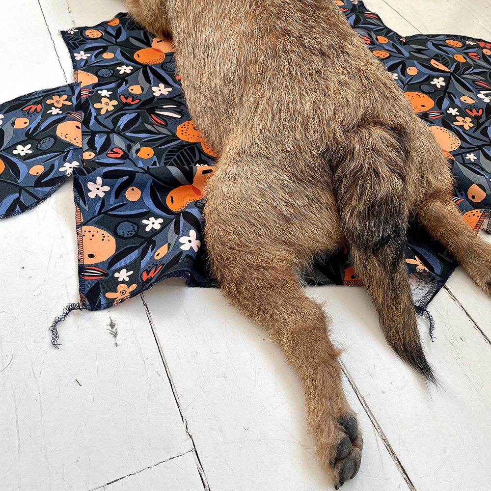 Dog's bum laying on sewn garment
