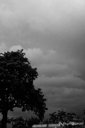 grey storm by rubys polaroid
